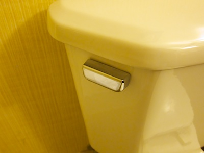Chrome toilet flush lever on the side of the tank